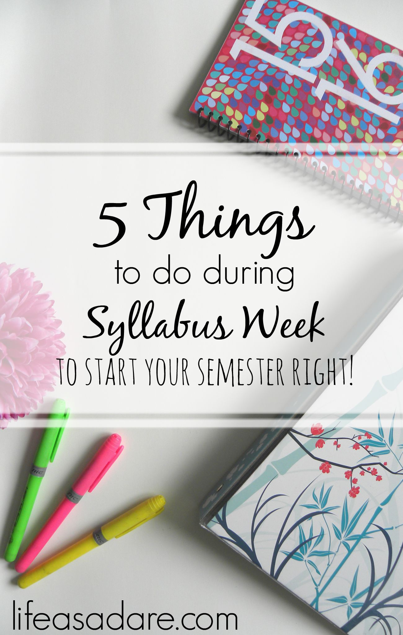 Syllabus week is a great opportunity to get your semester started on the right foot! Here are 5 things every college student should do during syllabus week!